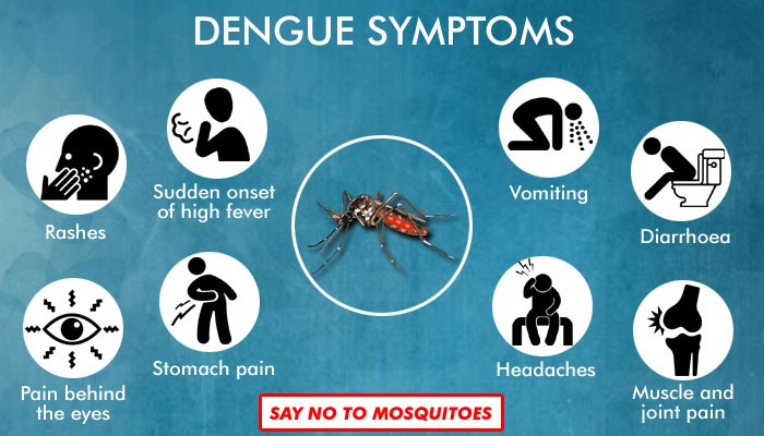 This Article Tells Clearly What is Dengue and How to Handle it